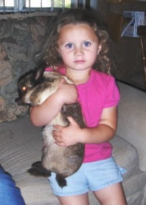 Rabbits don't like to be picked up off the ground