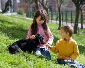 Children and dogs often share the same environment for tick disease