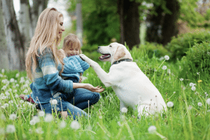 People share the same environment as dogs and tick disease says pet expert Steve Dale