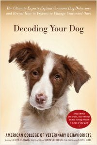 Pet expert Steve Dale speaks with veterinary behaviorist Dr. Amy Pike about thunderstorm anxiety in dogs