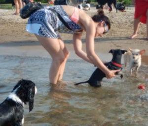 Pet expert Steve Dale endorse Montrose dog beach as the top dog beach in America
