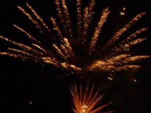 Pet expert Steve Dale offers tips of calming pets afraid of fireworks