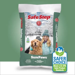 Pet Expert Steve Dale Offers Winter And Cold Weather Pet