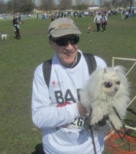 AKC Top Breeds: Labrador Top Dog, Yet Again