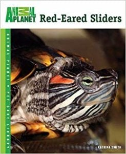 Red-eared slides are being sold again and popular on the pet