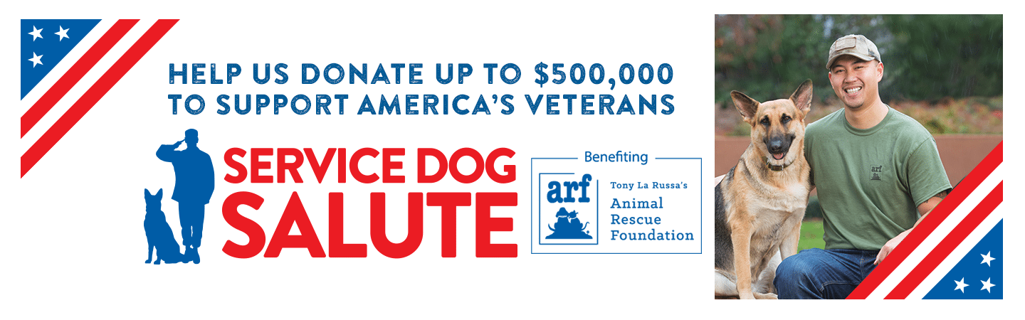 Purina Dog Chow helps raise money for veterans with PTSD