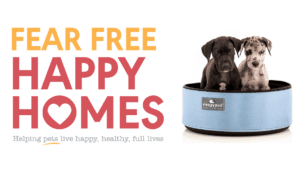 Debbie Martin and Steve Dale on Fear Free Happy Homes