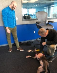 Dave Eanet romps with Quirky and Justin Kauffman looking on, WGN Radio