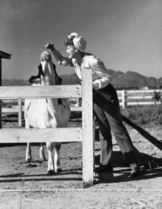 Lucille Ball and a cow friend