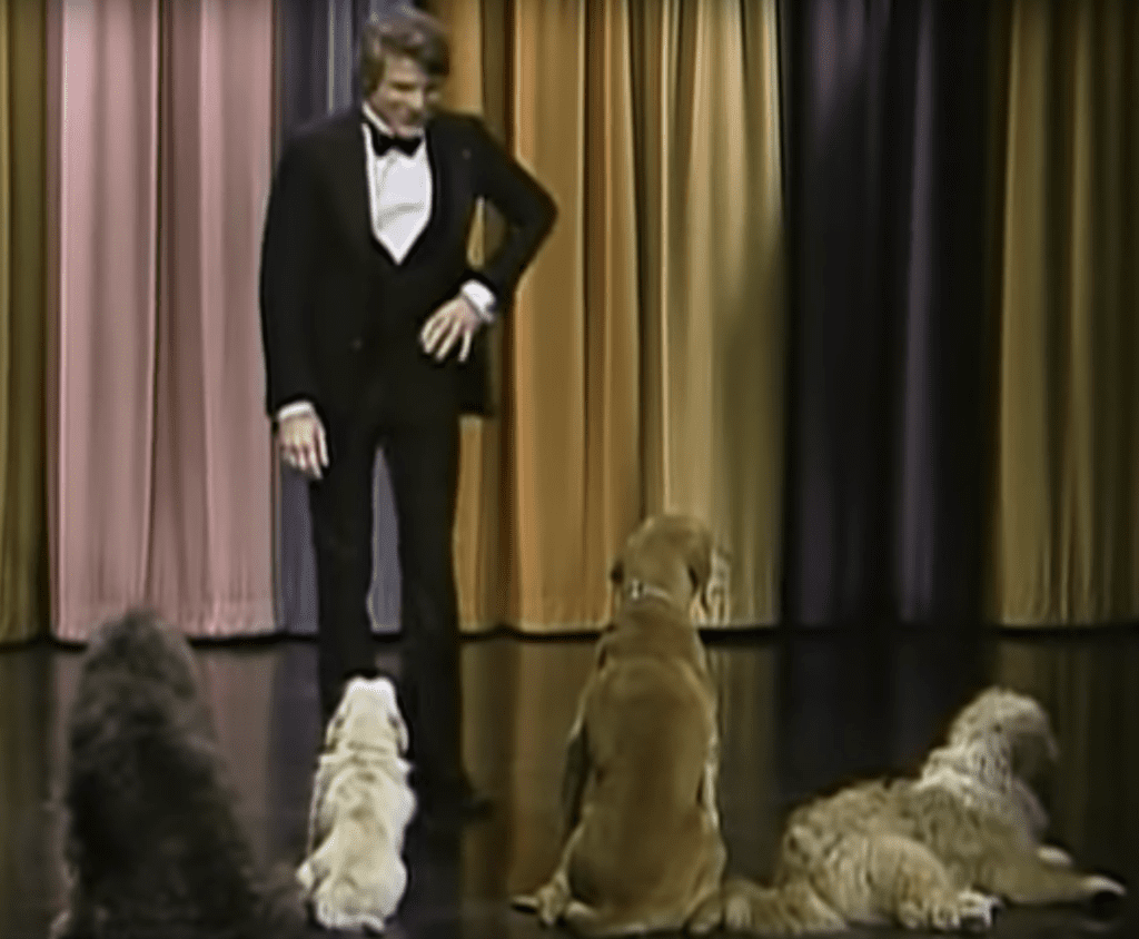 Steve Martin plays to dogs