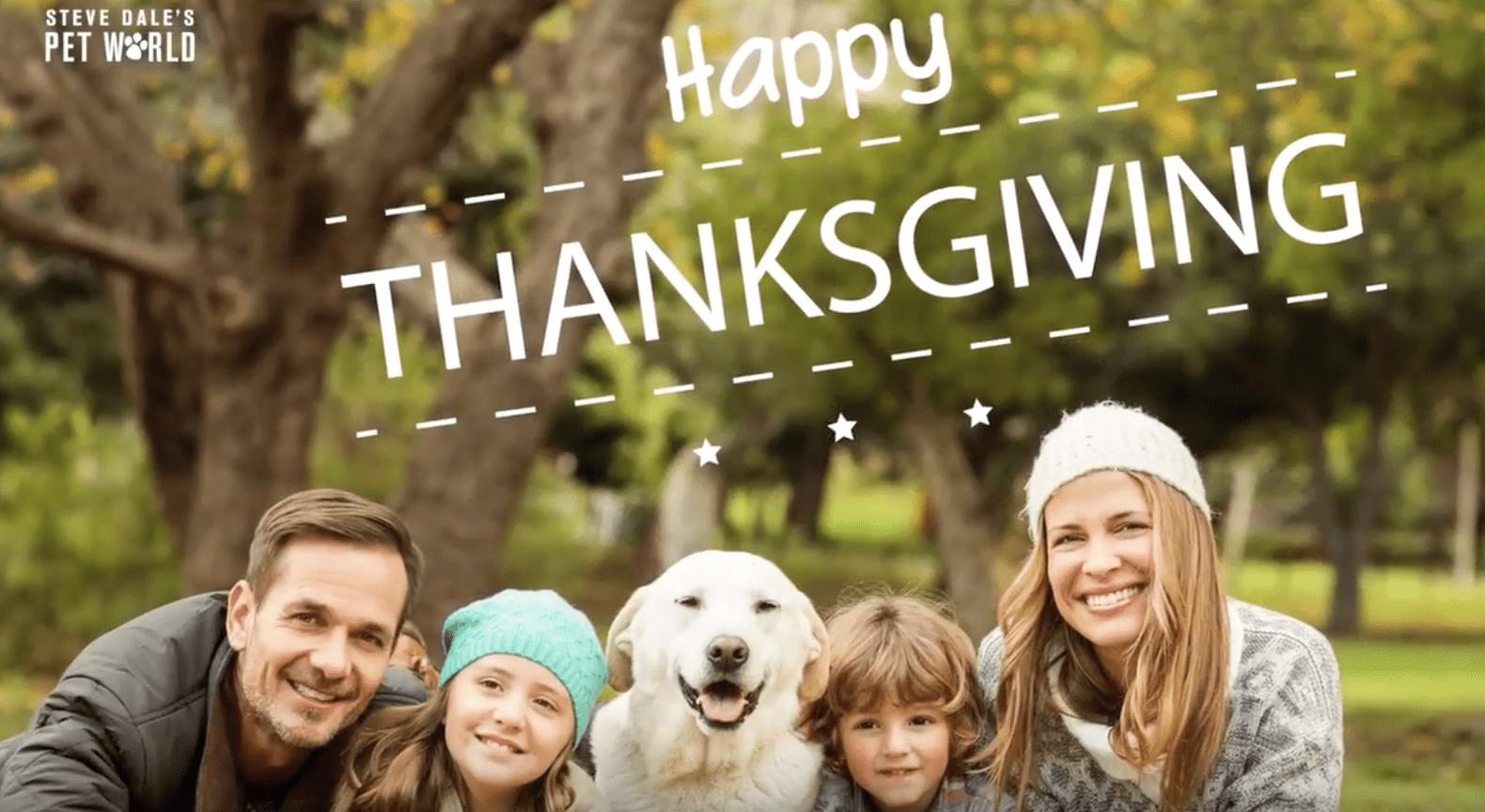 Pet expert Steve Dale Thanksgiving pet safety video