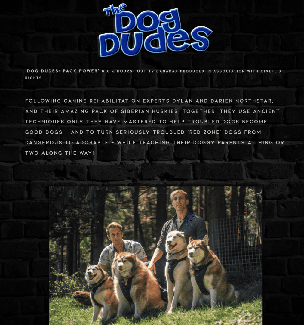Steve Dale, CABC, expresses concerns of the Dog Dudes